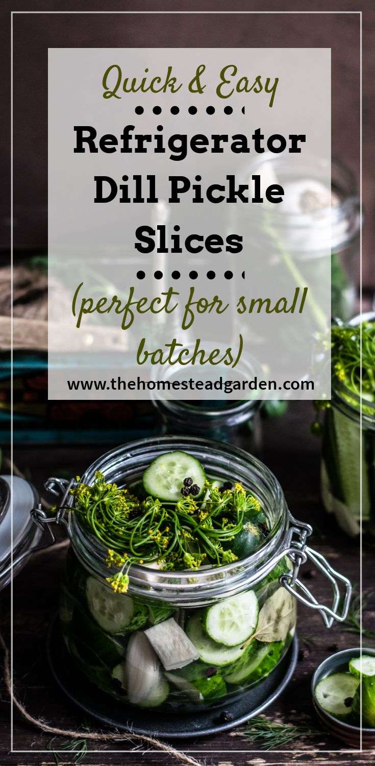Quick and Easy Refrigerator Dill Pickle Slices